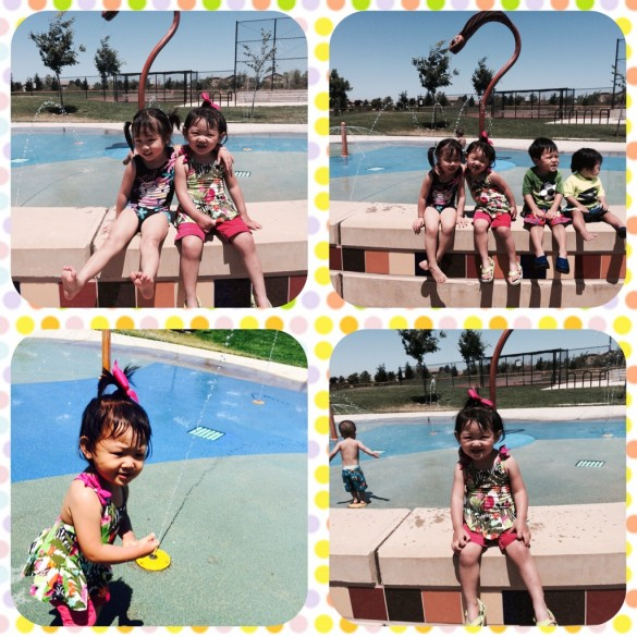 Roxy & friends had fun playing with friends at the water spray ground at the park. 1st time in a swimsuit!
