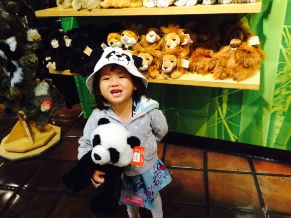 My cute little panda