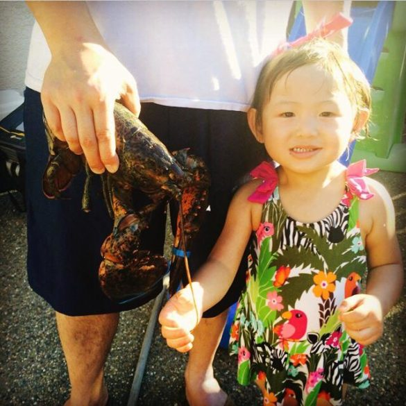 Roxy celebrating her 1st 4th of July with lobster