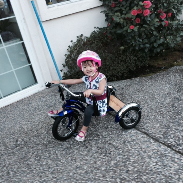 Roxy got a Schwinn tricycle on Valentine's Day. Technically, it's an early birthday gift for her.