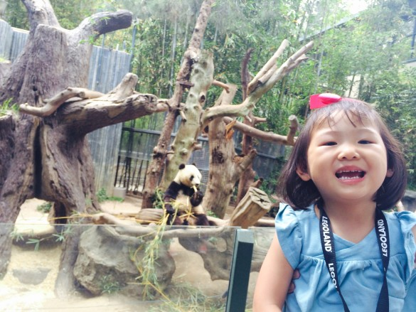 Roxy was very happy to see Xiao Liwu the panda at the San Diego Zoo