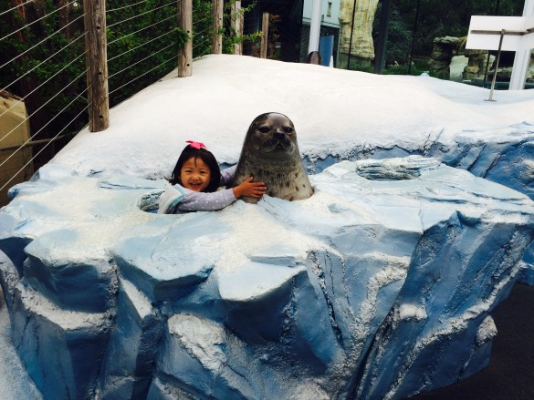 Roxy hugging a seal at the San Diego Zoo